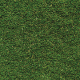 Hengistbury Namgrass | Available from Elliotts